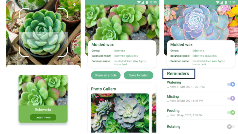 NatureID App - Identify Plants With A Tap Of A Finger