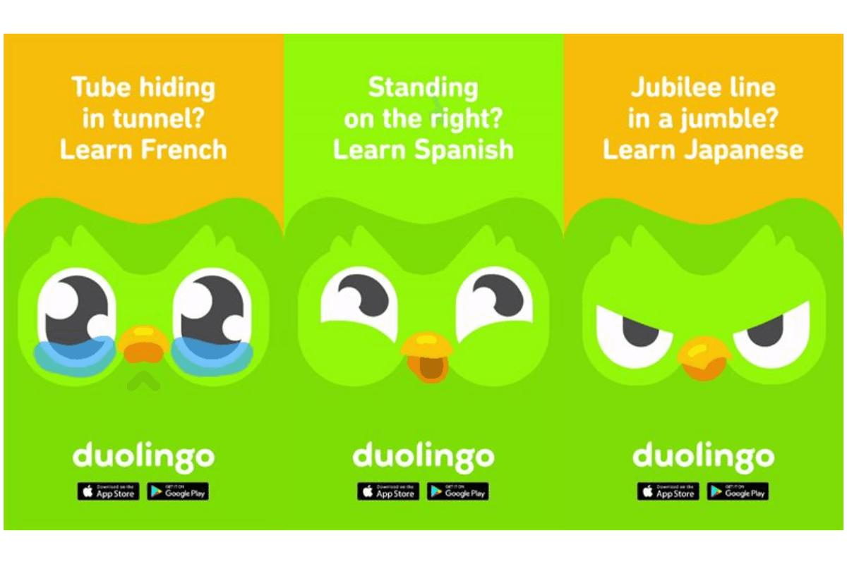 Learn Why Duolingo Is So Popular